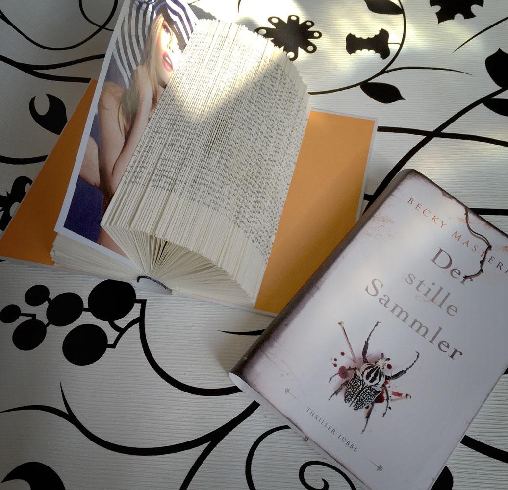 Basteln mit Büchern, die einem nicht am Herzen liegen (aktuelle Schulbücher ha ha!)