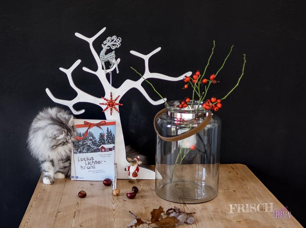 Skandinavische Weihnachten, das ist natürlich auch für unseren Norwegischen Waldkater mega interessant