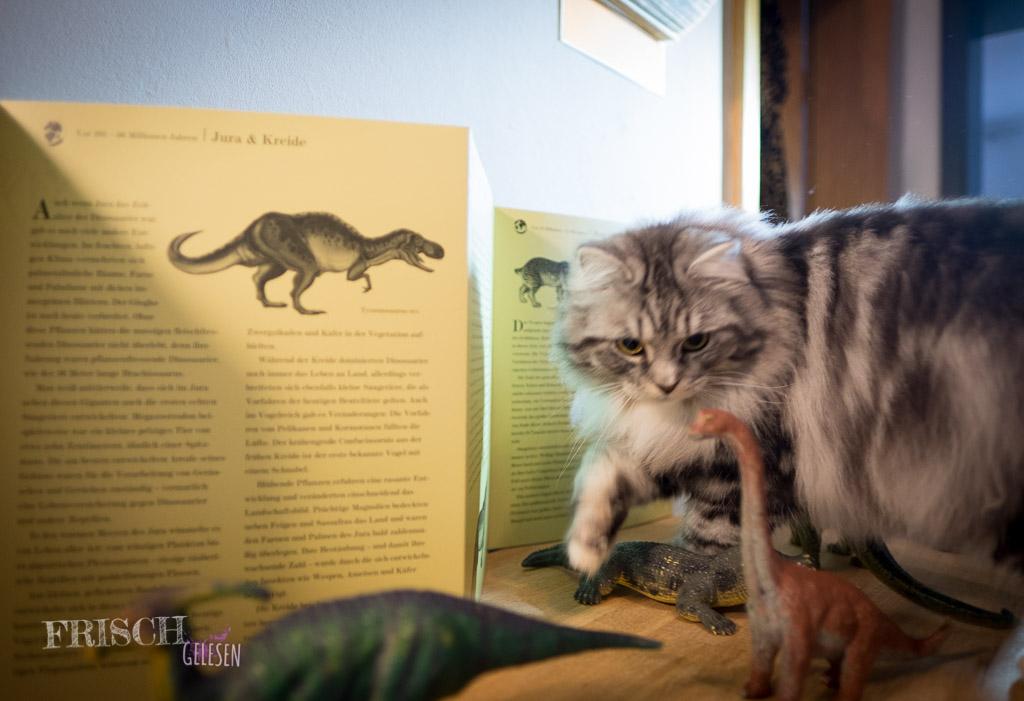 """Ja, und auch unser Kater Stuart fand das Buch """"Der Baum des Lebens"""" hochinteressant"""