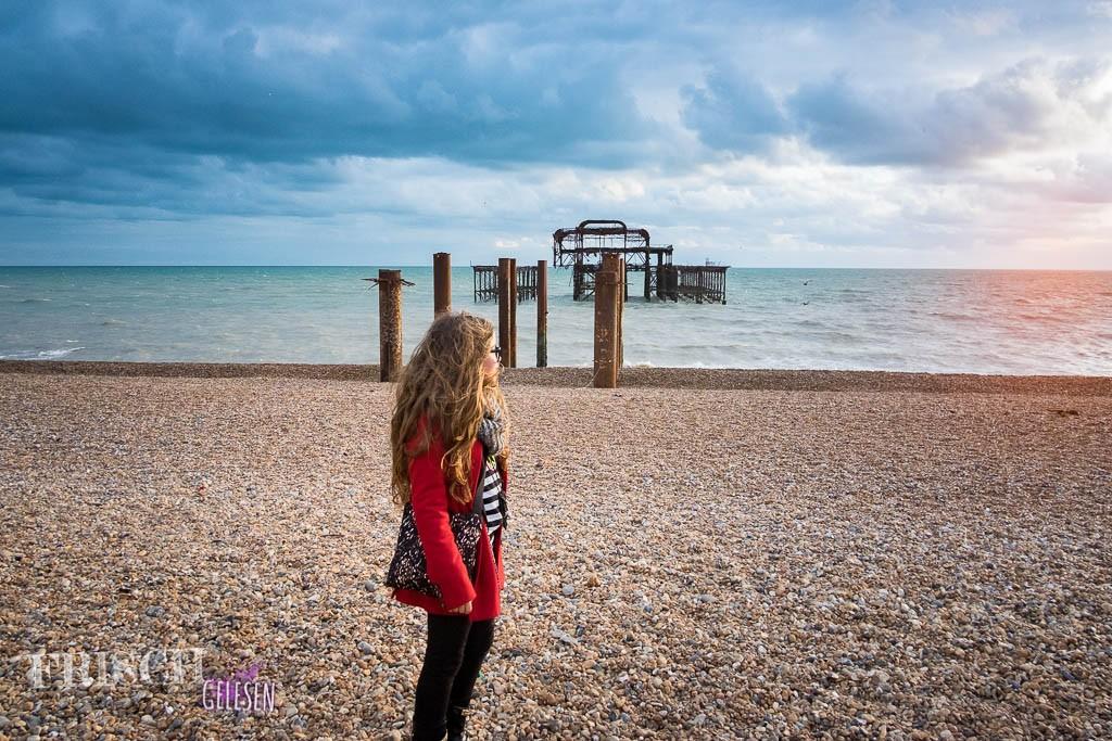 Nicht nur Ember hält Ausschau nach Zukunft und Vergangenheit, auch ich mache mir meine Gedanken über das Erwachsenwerden. Hier grüble ich in Brighton. ;)