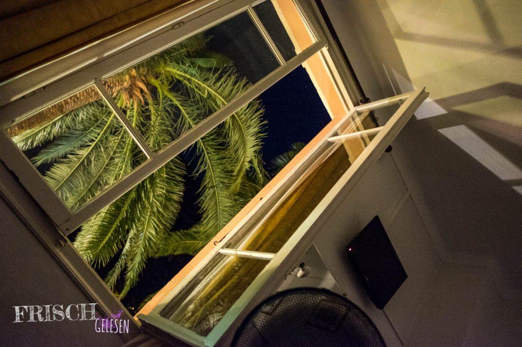 Zum Beispiel daran: Diese Palme guckte direkt in eines unserer Fenster. Nicht schlecht, könnte ich mir zu Hause auch gut vorstellen.
