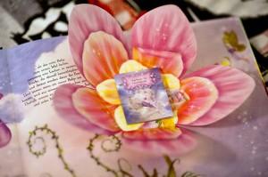 Zauberhafte Feenwelt - Detail aus dem Buch