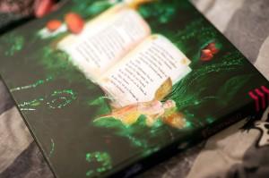 Zauberhafte Feenwelt - Detailfoto aus dem Buch